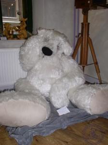 """Мишки Тедди Гузель Костына 9 лет назад. Выставка мишек Тедди """"Теддимания"""" - 2004. Фото 31."""