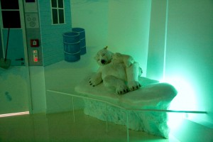 Мишки Тедди. Музей Steiff/ Гинген (Германия). Фото 15.