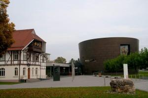 Мишки Тедди. Музей Steiff/ Гинген (Германия). Фото 4.