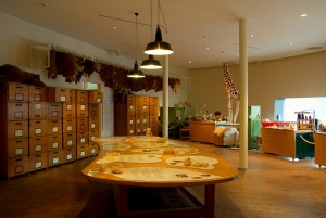 Мишки Тедди. Музей Steiff/ Гинген (Германия). Фото 49.